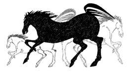 Trio der Pferde Schwarzweiss Stockfotos