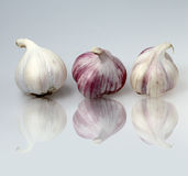 Trio Garlic Stock Image