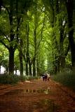 Trio marchant un boulevard de Florence Image libre de droits