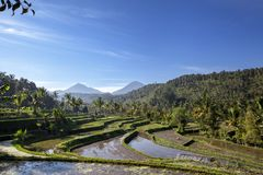 Trio Mountains of Bali Mt Batur, Mt Abang, Mt Agung in the Mor stock photos