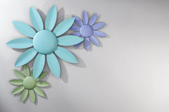 Trio of Pastel Spring Flowers over White Background Royalty Free Stock Photo