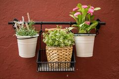 A trio of plant pots. Hanging on a wall in Marbella, Spain Royalty Free Stock Photos