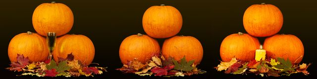 A trio of pumpkins against a black background Royalty Free Stock Images