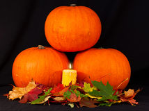 A trio of pumpkins against a black background Stock Photo