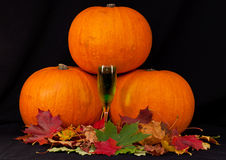 A trio of pumpkins against a black background Royalty Free Stock Photography