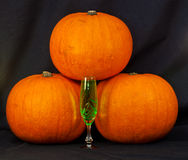 A trio of pumpkins against a black background Royalty Free Stock Image