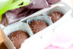 Salted caramels in a white box Royalty Free Stock Image