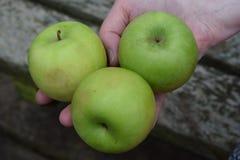 Trio van appelen Stock Foto's