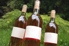 Trio of wine bottles. Focus is on the front bottle Royalty Free Stock Photo