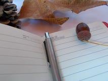 Trip in autumn stock image