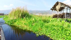 Trip with boat at Inle Lake, Myanmar. Inle Lake, Myanmar-21 December, 2015. Burmese man rides the boat through the traditional village and floating gardens of stock video footage
