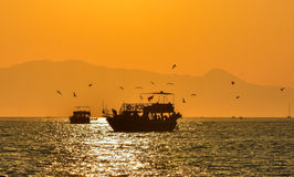 Trip boat on the sea at sunset. Flying seagulls on the boat. Stock Photos