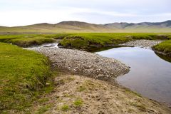 Trip in mongolian steppes stock image