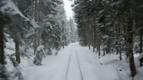 A trip on an old train through a thick dense snowy forest. stock video footage