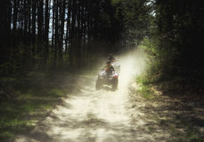 Trip on quads through the forest trails. Stock Image