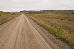 Trip on the road in iceland. A beautiful dirt road among wild nature Royalty Free Stock Images