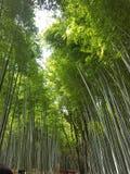 Trip to Japan stock photo