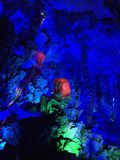 Red flute cave in Guilin royalty free stock photography