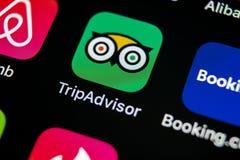 Tripadvisor applikationsymbol på närbild för skärm för Apple iPhone X tripadvisor symbol för com app anslutningar för begrepp för Royaltyfri Fotografi