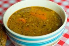 Tripe σούπα Στοκ Φωτογραφία