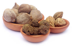 Triphala Royalty Free Stock Images