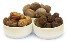 Triphala, kombinacja ayurvedic owoc Fotografia Stock