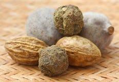 Triphala, kombinacja ayurvedic owoc Obraz Stock