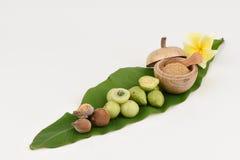 Triphala (thai name) means three fruits contain Terminalia belerica (Gaertn.) Roxb.), Terminalia chebula Retz. and Phyllanthus emb Stock Photo