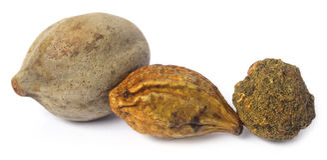 Triphala, una combinación de frutas ayurvedic Foto de archivo libre de regalías