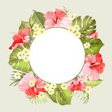 Tripical flowers elements. Royalty Free Stock Image