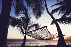 Tripical hammock at sunset Royalty Free Stock Images