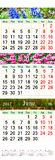 Triple calendar for April May and June 2017 with pictures Stock Photography