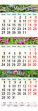 Triple calendar for March April and May 2017 with pictures of flowers Royalty Free Stock Images