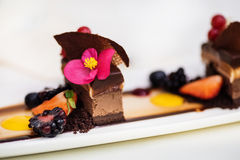 Triple chocolate dessert Royalty Free Stock Photo