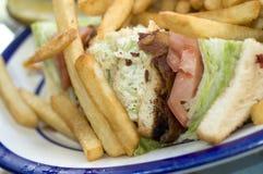 Triple decker sandwich Royalty Free Stock Images