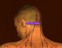 Acupuncture Point TE18 Chimai, 3D Illustration, Brown Background stock photography