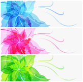 Triple EPS10 colorful flower background Royalty Free Stock Photography