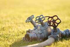 Triple faucet on the grass Stock Photos