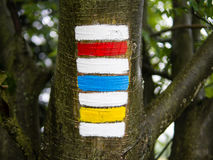 Triple hiking sign on the tree trunk, typical czech tourism. Triple hiking sign on the tree trunk, red, blue and yellow with blurred bokeh background, typical Stock Photo