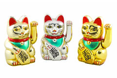 Triple Maneki Neko Lucky Cat Isolated Royalty Free Stock Photography