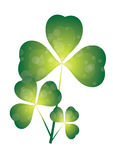 Triple shamrock Stock Photos