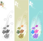 Triple - swirl floral background Royalty Free Stock Image