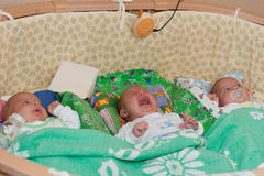 Triplet babies. Three nice newborn kids lie in a cot Stock Photos