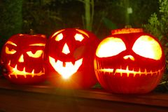 A triplet of Halloween Pumpkins. My kids spent a very happy evening carving some amazing pumpkins. The candles lasted hours outside and looked amazing Royalty Free Stock Photography