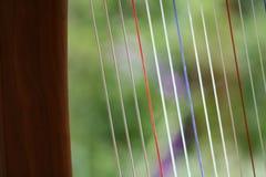 Triplettsiërra harp stock foto's