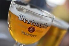 Triplo della birra di Westmalle Immagini Stock