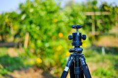 Tripod lokalizuje w zielonym terenie Lokalizować w pomarańczowym gar zdjęcie royalty free