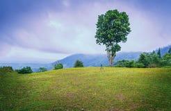 Tripod Ustawiający na wzgórzu z rankiem krajobrazowy Thailand Fotografia Royalty Free
