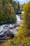 Trippeln faller den Du Pont skogen NC Royaltyfri Bild