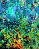 Trippy i lager färger arkivbild